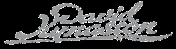 DK David Kynaston logo grey 2.png