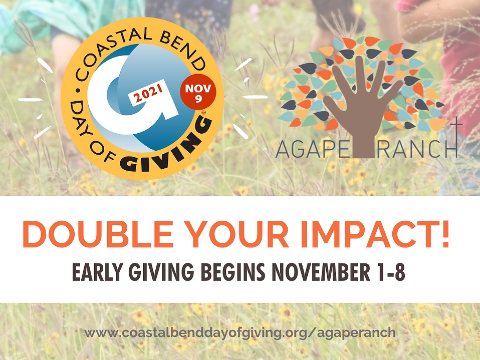 Coastal Bend Day of Giving (Header).png