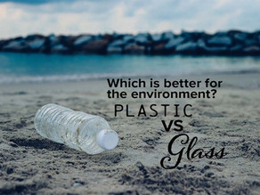 Plastic vs Glass: Which is Better For The Environment?