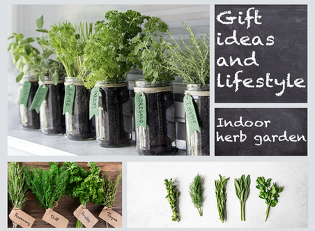 Gift ideas and lifestyle: Indoor herb garden
