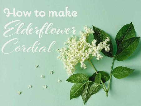 How To Make Homemade Elderflower Cordial