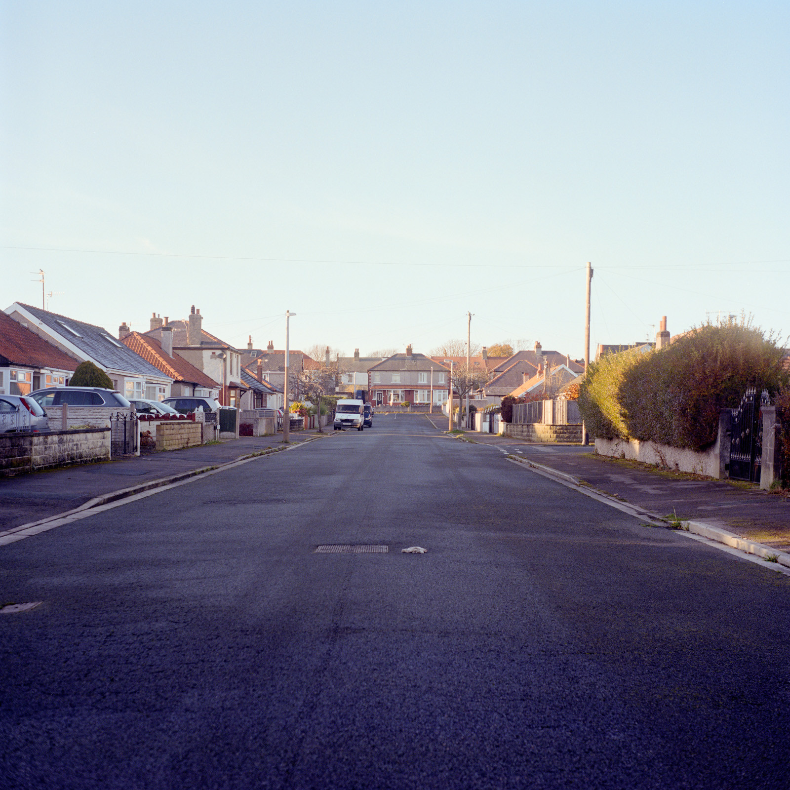 Brook Road, 2020