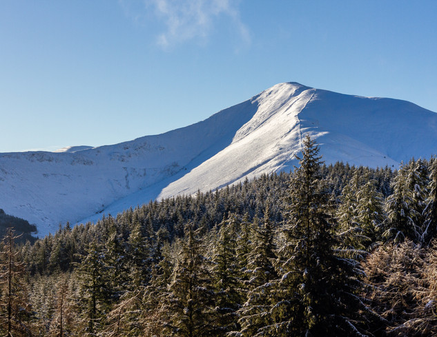 Grisedale Pike from Whinlatter, 2019