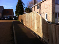 Feather edege fence
