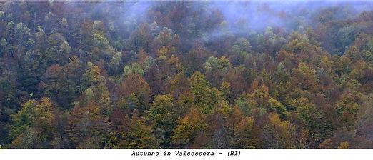 Autunno in Valsessera - (BI)- fronte 155
