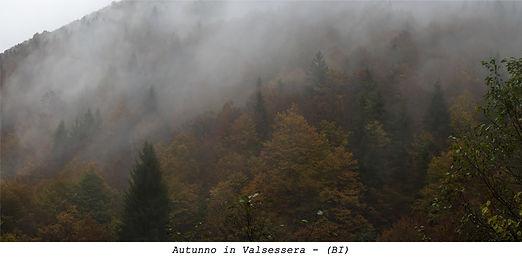 Autunno in Valsessera - (BI)- fronte 160