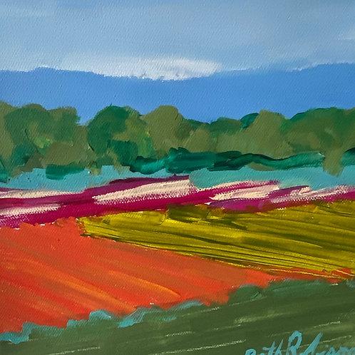 """Fields 2""   8x8   Canvas"