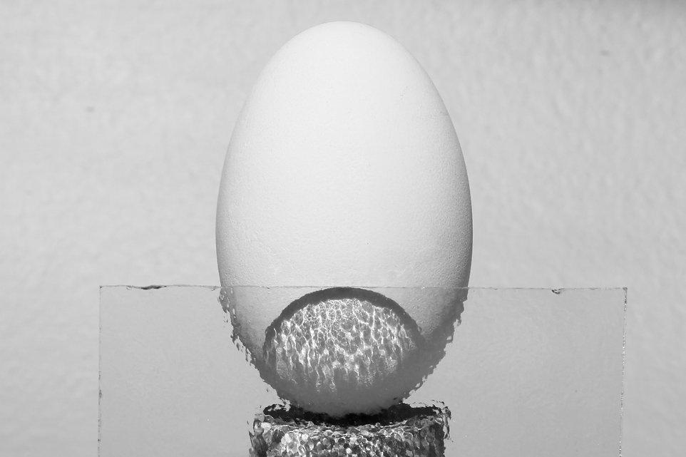 Egglipse