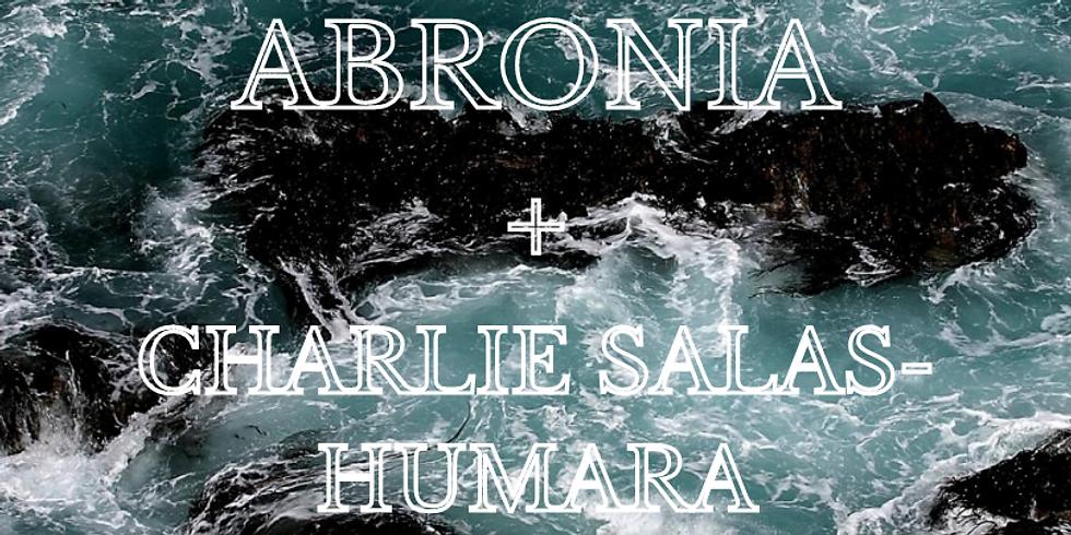 ABRONIA//CHARLIE SALAS-HUMARA