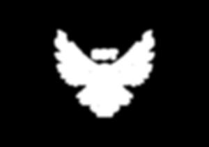 CDT_Logo_Blanco.png