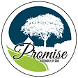 Promise-AG-Logo-Final-Light-Green.png