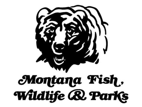 High temps prompt additional fishing restrictions on several Montana rivers