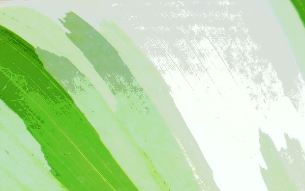 Nana Leaf Zoomed.jpg