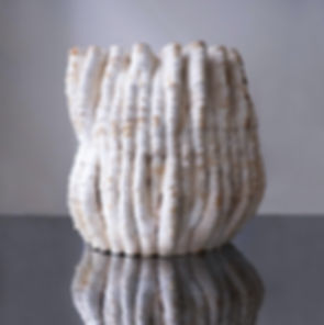 Mycelium 3d printing