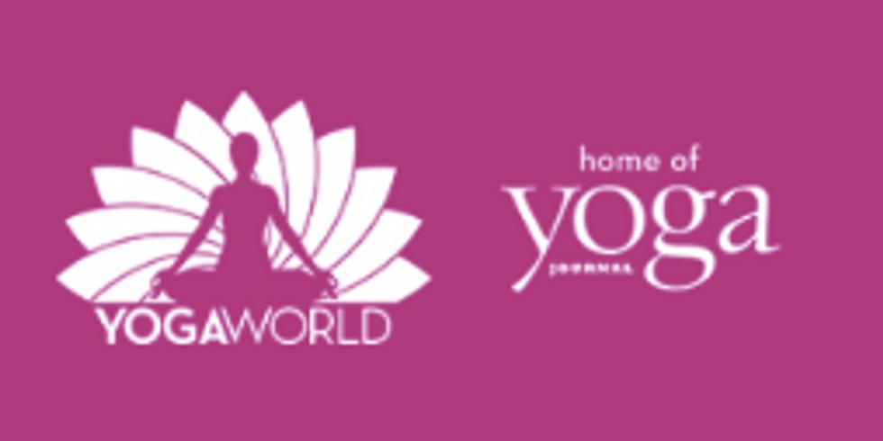 Vortrag auf der Yogaworld