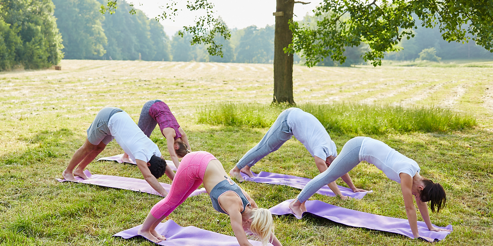 Yoga Flashmob am See