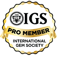 IGS-ProMember.png