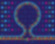 DNA Nanoswitches: A quantitative platform for gel-based biomolecular interaction analysis