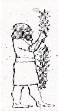 Oldestkebab.jpg