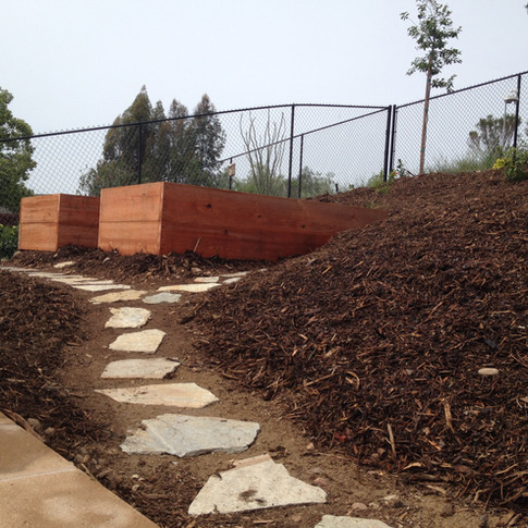Flagstone pathway surrounded by mulch beds to the veggie box.