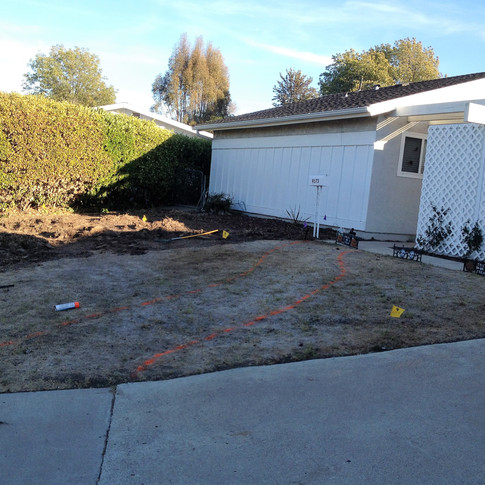 Front yard lawn has been sprayed and killed. Now hand scalping has begun.