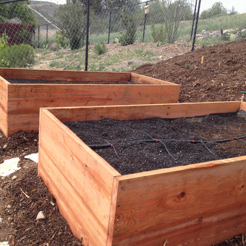 Vegetable boxes with automated drip irrigation.