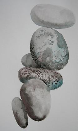 Pebbles study