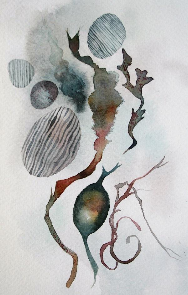 Sea collection 1 - study