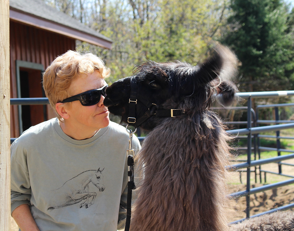 Anne Phinney owner of Moose River Farm in Old Forge NY and her llama Bravo