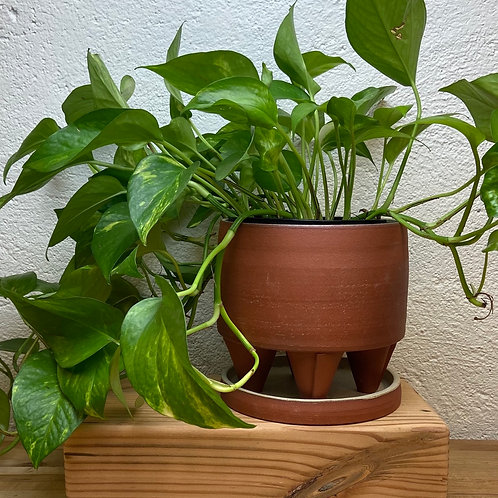 Red Clay Planter