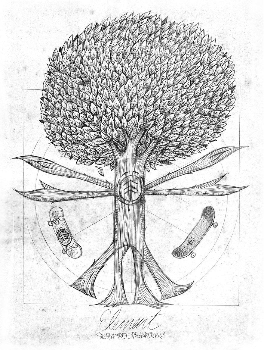 element_mottilaa_pushin_tree_proportions