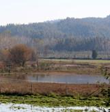 confluence 5.jpg