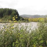 confluence 2.jpg