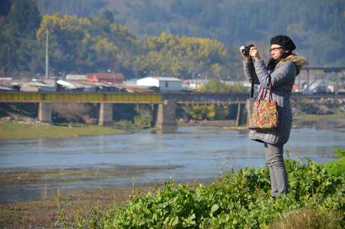 Foto_19_Sector_Darío_Silva.JPG