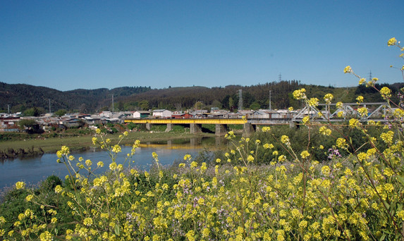 Puente ferroviario / Railway Bridge