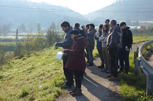 Foto 3 Sector Las Ulloas, detalle.JPG