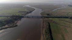 Puente Las Ballenas/Bridge