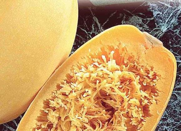 Courge Spaghetti Pasta (semences) - Bio