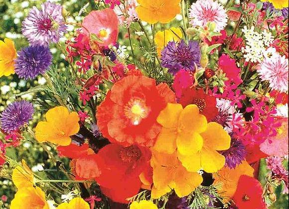 Fleurs d'antan pour plate-bande(semences)