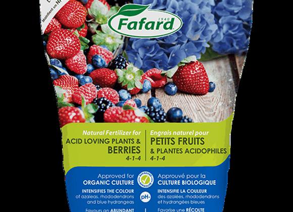 Engrais pour petits fruits et plantes acidophiles