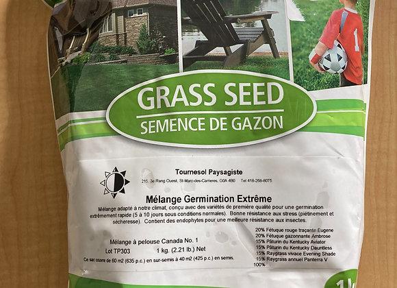 Semence à pelouse MI-OMBRE 1kg