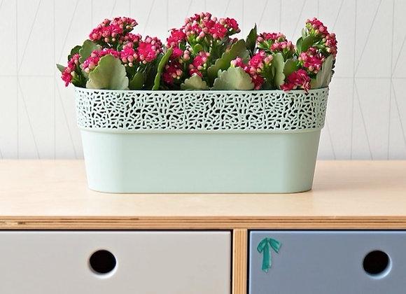 Cache-pot rosa oval 30cm