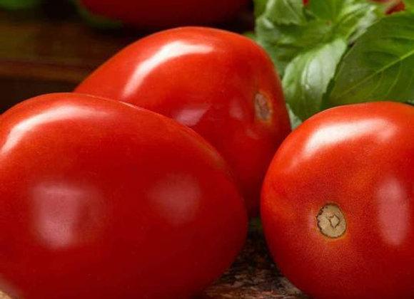 Tomate Roma italienne (semences) - Bio