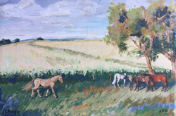 trio de caballos bajo la sombra 20x30cm acr en lienzo