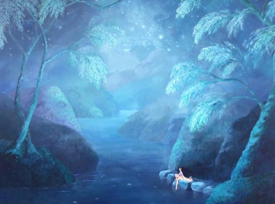 Bosque en la noche