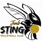 Juab Sting Logo.png