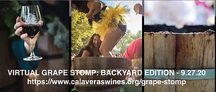 """The first of its kind, """"Virtual Grape Stomp:Backyard Edition"""" is set to take place Sunday, September 27th in celebration of the 27th Annual Calaveras Grape Stomp!"""