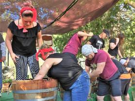 Calaveras Grape Stomp & Harvest Festival