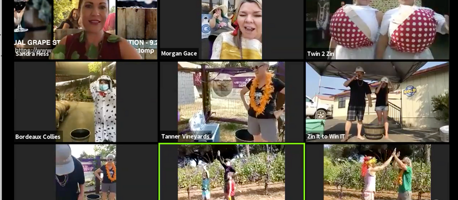 2020 Virtual Grape Stomp is a Wrap! Top 10 Teams Take Top Honors & Auction Opens