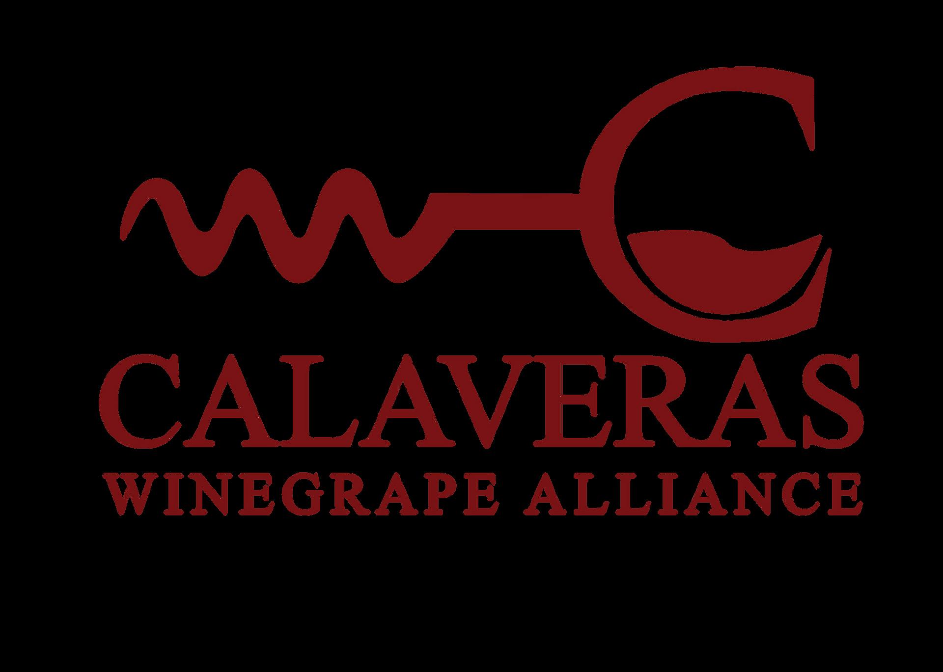 Sky Wine Info   ltalian Wine